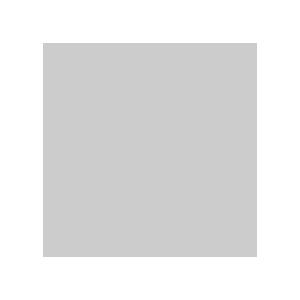 Стойка с креплением для вспышки и зонта Fotokvant LS-2101B