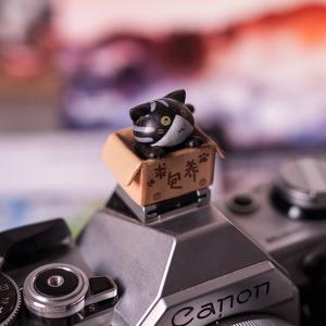 """Заглушка на горячий башмак """"котенок в коробке"""" черный Fotokvant PRZ-004"""