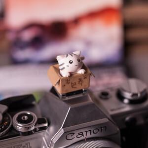 """Заглушка на горячий башмак """"котенок в коробке"""" светло-розовый Fotokvant PRZ-002"""