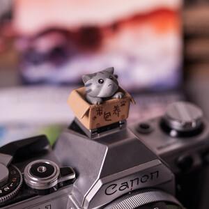 """Заглушка на горячий башмак """"котенок в коробке"""" серый  Fotokvant PRZ-003"""