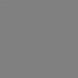 Фон бумажный 1,35x11м цвет серый Vibrantone VBRT1258 Slate Grey 58